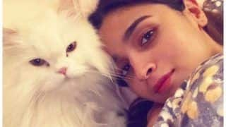 Alia Bhatt's 'Mother' Vibes in THIS Picture is All You Need to Drive Away Tuesday Blues, Cat Lovers Take Note