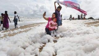 Another Yamuna? Chennai's Marina Beach Covered in Layer of White Toxic Foam | See Pics