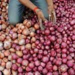Unique Protest! Varanasi Shops Give Onions on Loan by Keeping Aadhaar Card as Mortgage