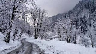 Watch | Netizens Share Pictures of the Winter Wonderland As Manali Receives Season's First Snowfall