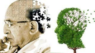 Alzheimer's Disease: Alternative Treatment Options to Make Patients' Life Easier