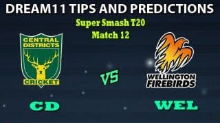 CD vs WEL Dream11 Team Prediction Super Smash 2019-20: Captain And Vice-Captain, Fantasy Cricket Tips Central Districts vs Wellington Firebirds Match 12 at Pukekura Park, New Plymouth 8:40 AM IST