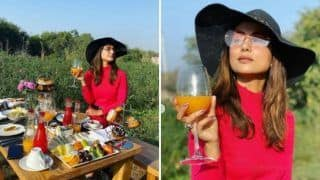 Hina Khan Enjoys Her Outdoor Breakfast in Pushkar, Looks Stunning in Pink Dress And Hat