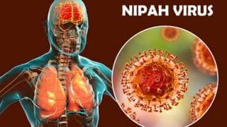 All You Need to Know About Nipah Virus Infection