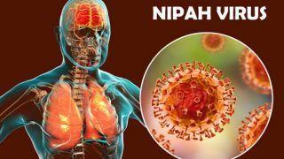 Nipah Virus: निपाह वायरस पर नया शोध, वैज्ञानिकों ने कहा- ये वैक्सीन हो सकती है मददगार