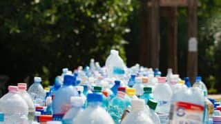 Chhattisgarh Forest Department Recycles Waste Plastic Bottles to Plant and Grow Saplings