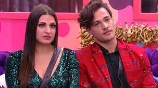 Bigg Boss 13: Did Asim Riaz's Brother Umar Riaz Asked Himanshi Khurana to Not Confess Her Love For Him?