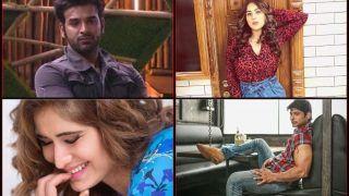 Bigg Boss 13: Shehnaz Gill Calls Paras Chhabra Her 'First Love', Siddharth Shukla Licks Off Chocolate From Arti Singh