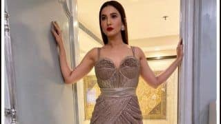 Gauahar Khan Leaves Fans Drooling And Her Latest Sultry Picture in Metallic Gown is to be Blamed!