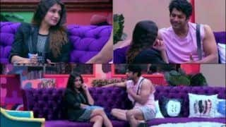 Bigg Boss 13: Fans in For New twist as Siddharth Shukla's Love Affair With Shefali Bagga Blossoms | Watch
