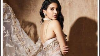 JudgeMentall Hai Kya Star Amyra Dastur Makes Fans Hearts Skip a Beat With Sexy Pictures in Backless Saree