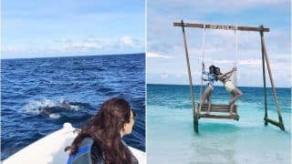 Kajal Aggarwal Continues to Tease Fans With Her Maldives Vacay Pictures, Chases Dolphins-Swings Above Ocean