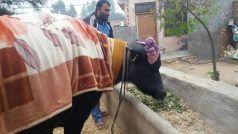 हरियाणा की 'सरस्वती' ने पाकिस्तान को पछाड़ा, बनाया यह रिकॉर्ड