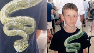 Airport Officials Ask 10-Year-Old Boy to Remove His T-Shirt Because It Had a Snake Printed On It