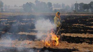 पराली जलाने को रोकने में नाकाम रहने पर उत्तर प्रदेश के 26 जिलाधिकारियों को नोटिस