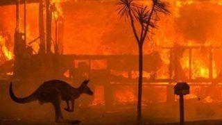 Australian Open 2020 to go Ahead as Scheduled Despite Bushfires Crisis