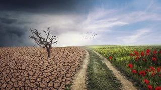 Climate Change is a Bitter Reality, This is How it Will Claim Your Life Gradually