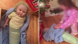 US Woman Gifts Her Daughter A Doll For Christmas, Stunned to Discover That It Was Stuffed With Cocaine