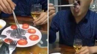 Watch | Man Dips Baby Mouse in Sauce and Eats it Alive, Video Disgusts Netizens