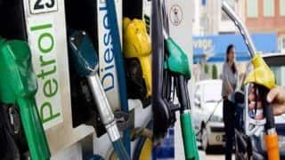 Petrol, Diesel Prices Today: No Increase in Fuel Rates in Delhi For First Time in 22 Days, Diesel Still Costlier