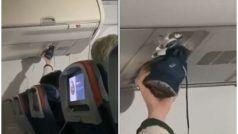 विमान के अंदर AC वेंट से जूते सूखाने का Video Viral, यूजर ने बोला खुशबू फैलाने का है सही तरीका