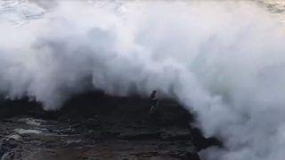 Watch   The Terrifying Moment When a Santa Cruz Beachgoer Was Swept Away by Giant Wave