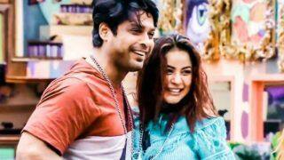 Sidharth Shukla-Shehnaaz Gill to Again Feature in Romantic Number, Sidnaaz Fans Rejoice