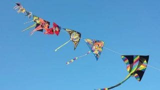 Gujarat's Makar Sankranti: As The State Celebrates Uttarayan, the Kite Festival; PM Extends Wishes
