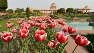 The Iconic Mughal Gardens at Rashtrapati Bhavan to Open for Public from February 5