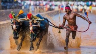 Kambala Racer Srinivas Gowda's Trial Date Yet To Be Decided, Will Be Given Time For Acclimatisation