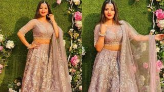 Bhojpuri Hot Bomb Monalisa Looks Breathtaking in Embroidered Purple Lehenga And Perfect Makeup at Riya Rajpoot's Wedding
