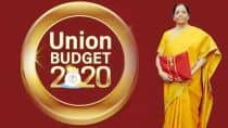 BJP-ruled States Praise 'Pro-people' Budget, Others Say it Lacks Vision to Revive Economy