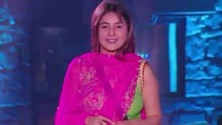 Bigg Boss 13 Grand Finale: Shehnaaz Gill, Punjab ki Katrina Kaif, Eliminated From The Controversial House