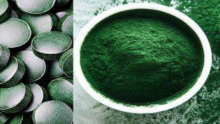 Spirulina Benefits In Hindi: UN ने इसे कहा भविष्य का सर्वश्रेष्ठ आहार, जानें स्पिरुलिना के हैरान करने वाले फायदे