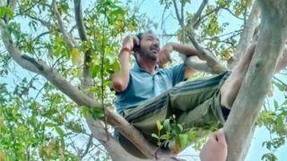 कोरोना के खौफ सेे नहीं बल्कि इस वजह से पेड़ पर चढ़ने को मजबूर हुए ICC अंपायर अनिल चौधरी