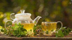 Green Tea: गलत तरीके से पीते हैं आप ग्रीन टी इसलिए होता है नुकसान, जबकि ये है बिल्कुल सही तरीका
