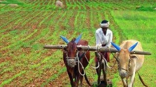 फसलों के नुकसान की होगी भरपाई, 11 लाख से ज्यादा किसानों को सीधे खाते में मिलेंगे इतने रुपये...