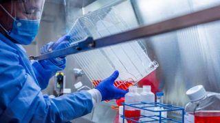Good News: कोरोना वैक्सीन का ह्यूमन ट्रायल शुरू, भारत की यह कंपनी जून में शुरू कर सकती है उत्पादन