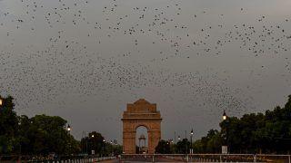 कोरोना वायरस का सकारात्मक असर, दिल्ली सहित उत्तर भारत में पिछले 20 साल में सबसे स्वच्छ हवा