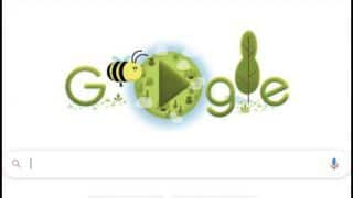 Trending News Today April 22, 2020: Google Celebrates Earth Day 2020 With Interactive Doodle Highlighting Importance of Bees, Marks 50th Anniversary