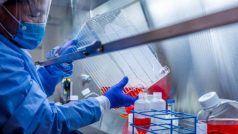 वैज्ञानिकों ने भारत में अलग तरह के कोरोना का पता लगाया, वायरस का एक अनूठा ग्रुप मिला