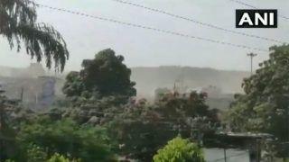 राजस्थान के जयपुर से लेकर एमपी के छतरपुर तक टिड्डी दलों का आतंक, देखें Videos