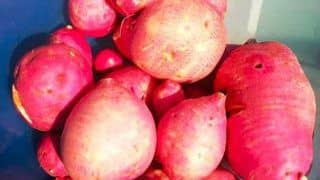 PotatoZilla: Lady Orders 1 kg of Sweet Potatoes, What She Gets Leaves Her Stunned