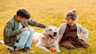 Pets Can Act Like Stress Busters For Parents With Autistic Children, Reveals Study