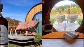 Drink Wine All Day, Sleep in Barrel? THIS 280-Year-Old Vineyard is Offering Luxurious Stay With Breathtaking View
