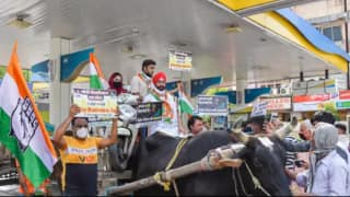Congress Workers Ride Bicycles, Bullock and Horse Carts to Protest Fuel Hike, Pictures & Videos Go Viral