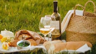 International Picnic Day 2020: 8 Quotes And Sayings That Describe a Picnic