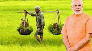 PM Kisan Samman Yojana: खाते में नहीं आए 2000 रुपए तो न हो परेशान, जानें अब कब मिलेगा आपका पैसा और कब आएगी दूसरी किस्त, ऐसे करें चेक