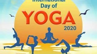 International Yoga Day 2020: How COVID-19 Lockdown Pushed Growth of Online Yoga And Classes