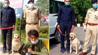 Ghaziabad Police Dog Leena Helps Catch Murder Suspects, Gets New Leather Strap in Reward